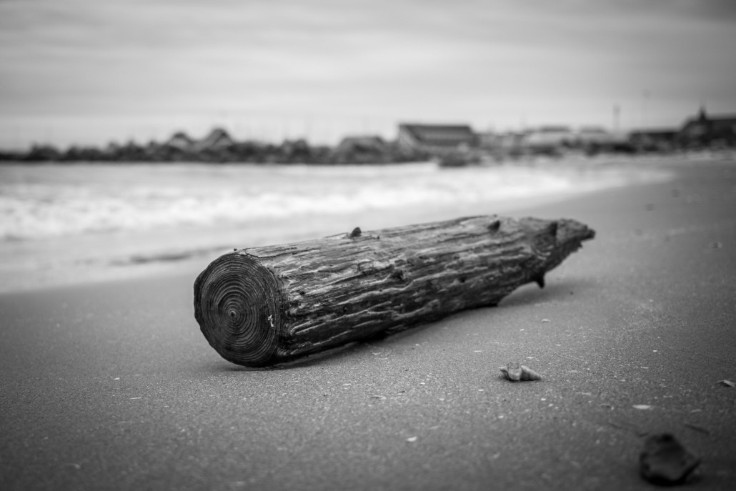 wood on beach